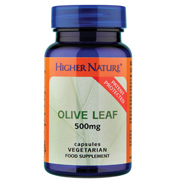 Olive Leaf 500mg