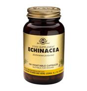 Echinacea 520mg